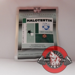 Halotestin Hubei (5 mg/tab) 50 tabs
