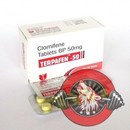 Terpafen-50 Shree Venkatesh 20 tab