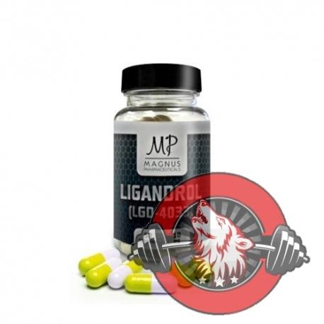 Ligandrol (LGD-4033) - Magnus
