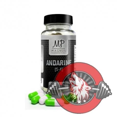 Andarine (S-4) - Magnus