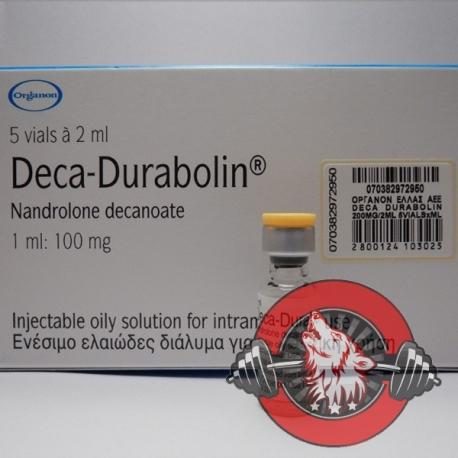 Deca Durabolin Organon (100 mg/ml) 1 ml